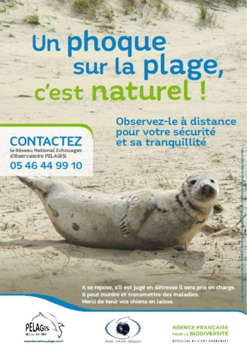 Toute l'actualité de la région des Grands Lacs, de la Côte Landaise et du Grand Dax...