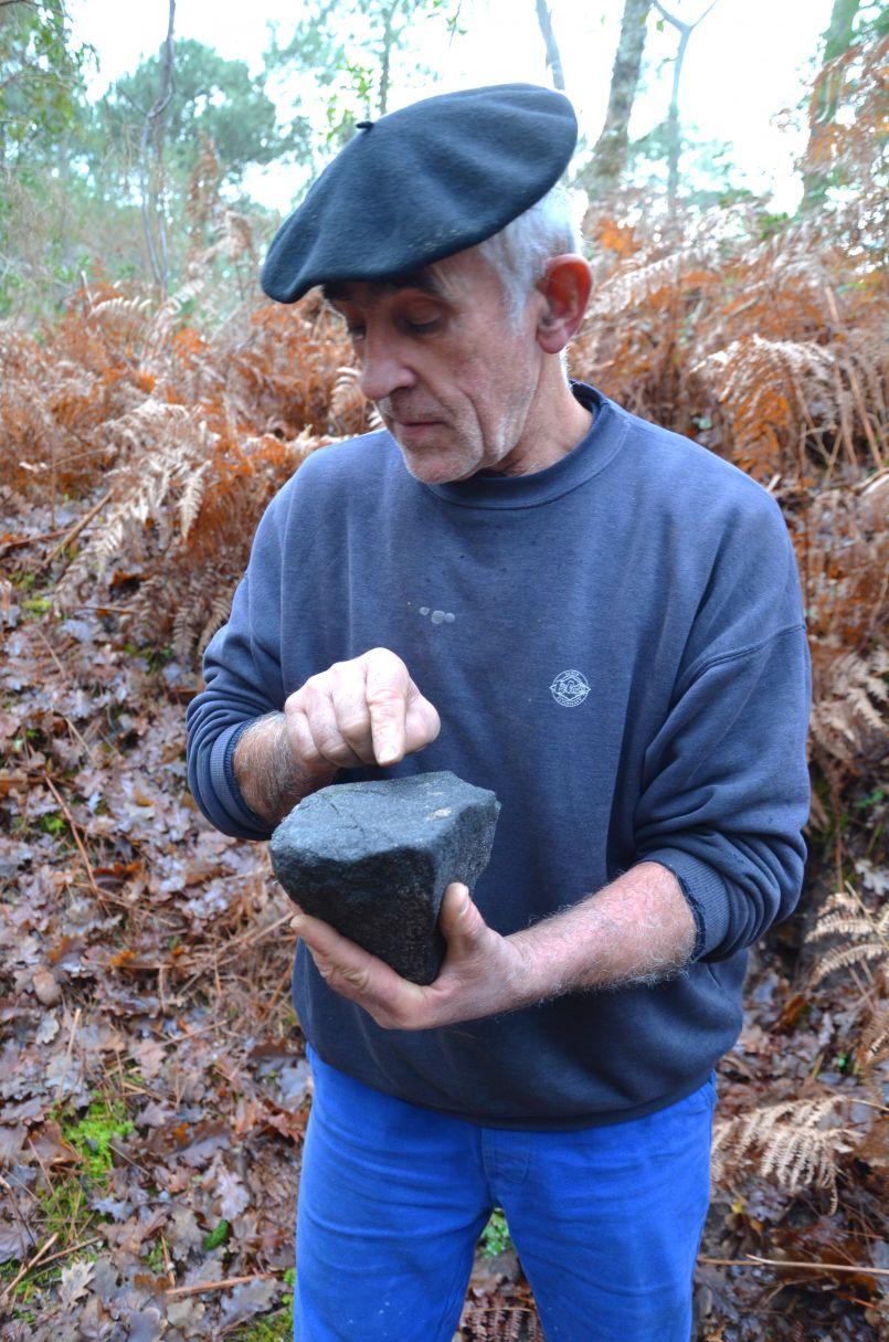 Biscarrosse: des expérimentations en forêt qui passionnent les érudits et scientifiques...