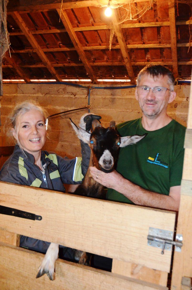 Conséquences de la Covid-19 et du confinement, la Chèvrerie de la Côte d'Argent arrête son activité