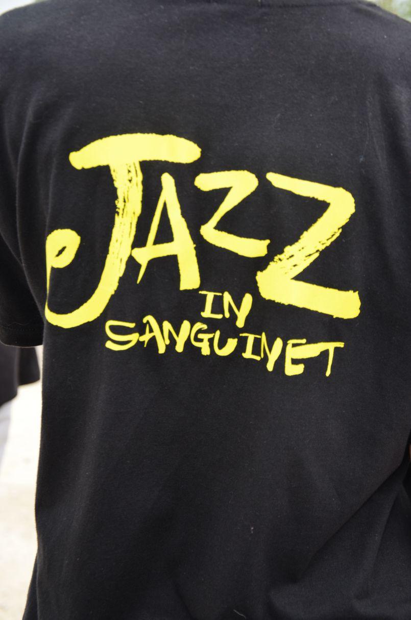 Sanguinet ouvre son Festival de Jazz : une 20ème édition avec Michel Jonasz entre autre...