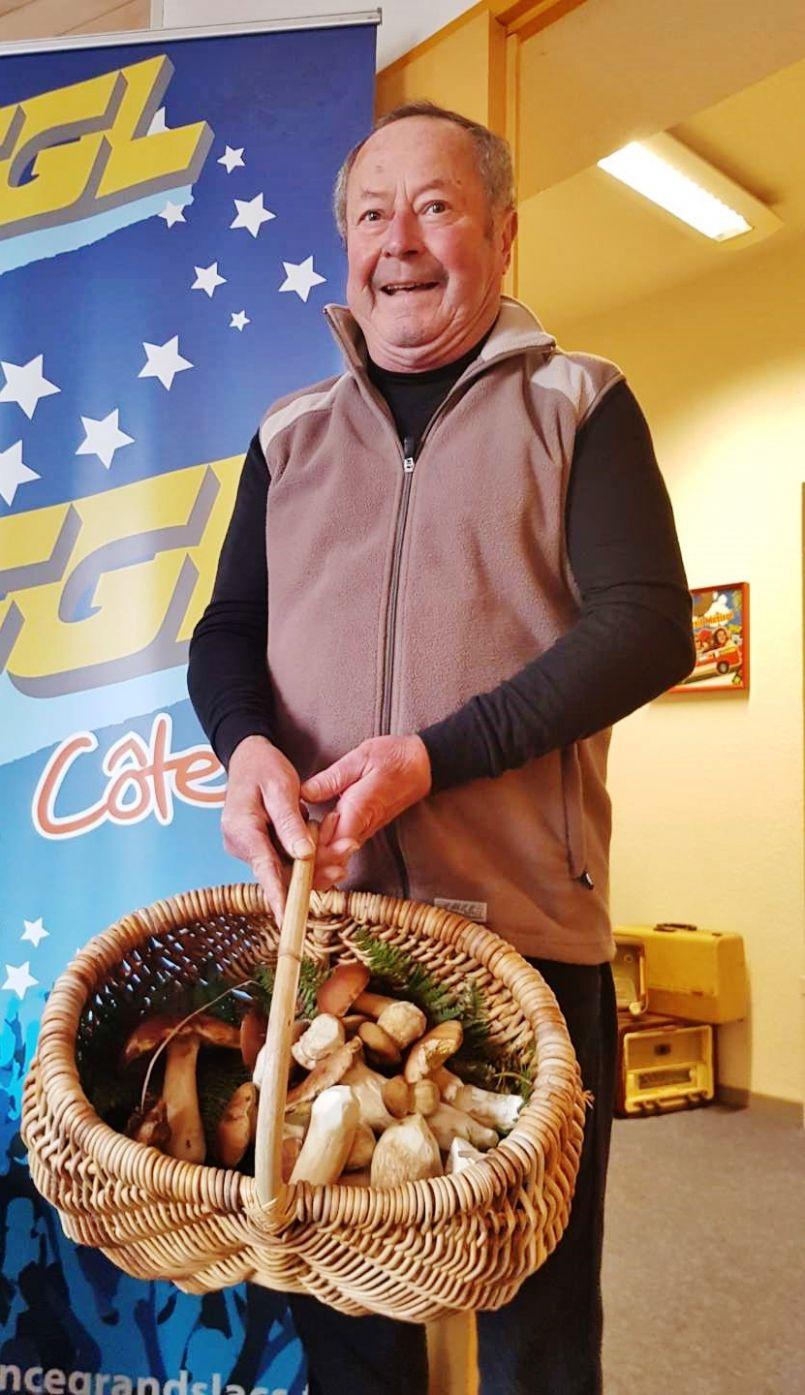 L'Automne dans les Landes : saison des cèpes record selon certains observateurs