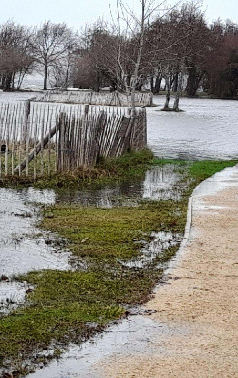 Les Landes 'Venise' éphémère. L'après tempête 'Justine' a une nouvelle fois laissé de nombreuses traces...